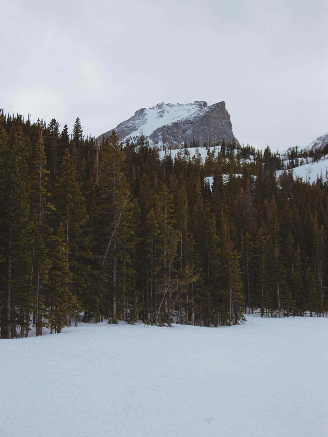 things to see in colorado bear lake