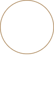 Taylor Wise Logo